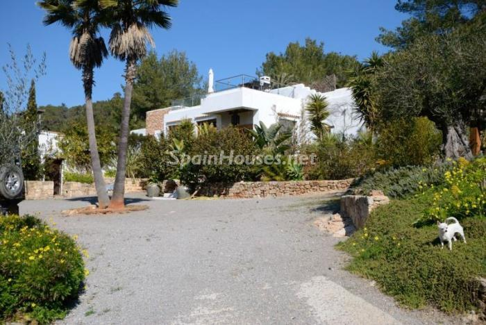 40587 815245 foto11970060 - Santa Eulalia. Wonderful Destination