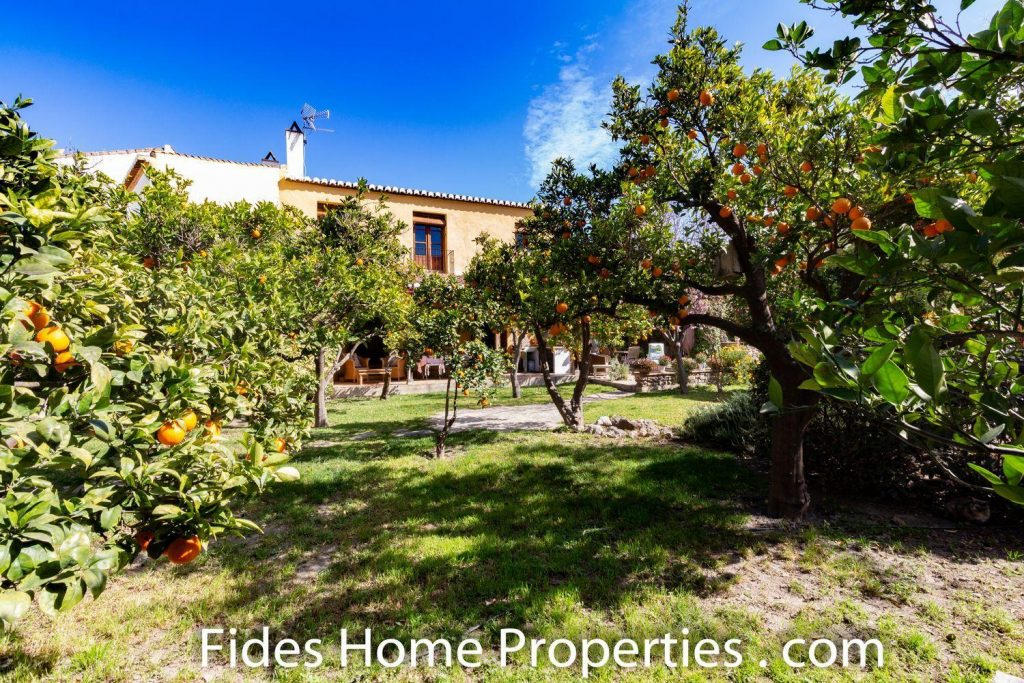 70959055 2777969 foto 026138 1024x683 - A little piece of heaven in the heart of the Valle de Lecrín (Granada)