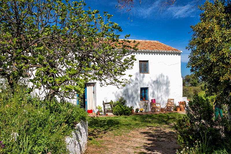 El Romeral 1 - El Romeral: Rustic cottage in the mountains of Malaga, Andalusia