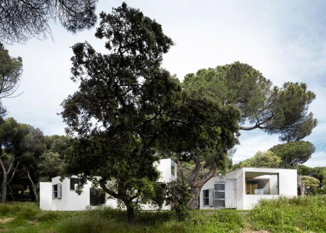 MO HOUSE 13