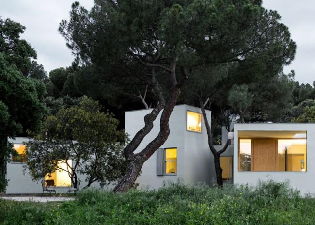 MO HOUSE 2