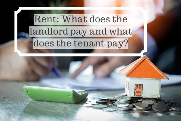 empresario firma contrato detras de modelo arquitectonico de casa 2379 1670 1 - Rent: What does the landlord pay and what does the tenant pay?