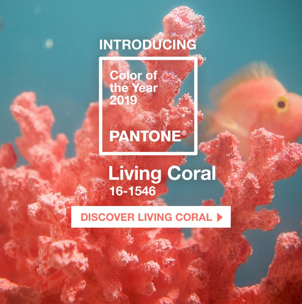 "pantone color of the year 2019 living coral homepage mobile 1017x1024 - Decorate with ""Living Coral"" color Pantone 2019"