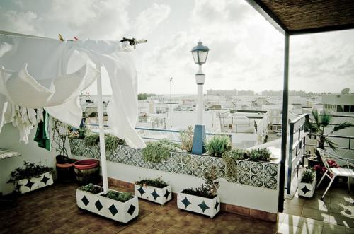 terrace 2 - Terraces